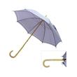 Colored advertising golf umbrella