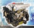 495 Forklift Engine