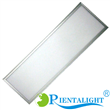 60W 300x1200mm Super Slim LED Light Panels