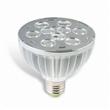 12V LED Spot Lamp