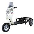 Electric Cargo Trike