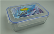 Borosilicate Glass Container