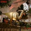 Indoor Dinosaur Exhibition