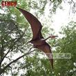 Flying Dinosaur Pteranadon