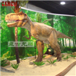 Dinosaur Museum Exhibits