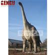 Biggest Ruyangosaurus Dinosaur