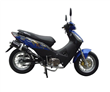 Two Wheel Moped