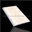 Artistic Fireproof PVC Ceiling Board