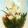 Princess Flower Tea