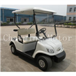 Two Seater Golf Kart