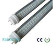 14W 0.9M 2Feet T10 Fluorescent Lights