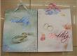 2011 Newly Wedding Paper Bag