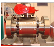 Forged Reduced Bore Ball Valve