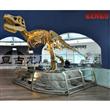 dinosaur fossil replica