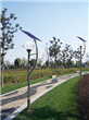 Energy Saving Single Lamp Solar Garden Light