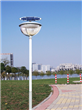 14W Single Lamp Solar Garden Light