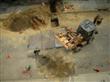 Construction Blocks Crusher
