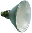 Low Power LED PAR38 Lamp