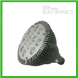 PAR38 LED Light