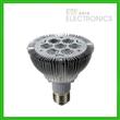 9W LED Par light