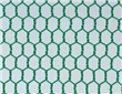 PVC Hexagonal Netting