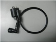 Motorbike Ignition Coil