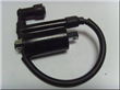 Motor Ignition Coil