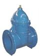 DIN F5 gate valve