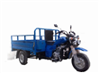 3 Wheel Cargo Motor Cycle