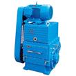 Rotary Piston Pump