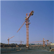 Economical Tower Crane