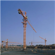 Multi Functional Tower Crane