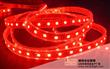 IP65 waterproof SMD3528 Red LED Strip