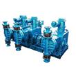 Multiplex Slurry Metering Pump