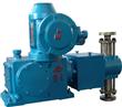 High Precision Metering Pump
