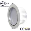 LED Down Light 20W LED Ceiling