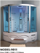 Most popular steam shower room with TV for two 9011