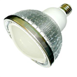 9W PAR38 LED Spot Light