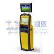 LKS8539 Yellow Dual Screen Internet Kiosk