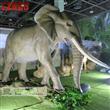 Real Size Animatronic Elephant Model