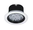 LED Ceiling Light Adjustable