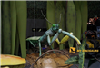 animatronic animal mantis in Singapore science centre exhibition