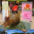 Carnival Equipment Amusement Animal Rides