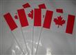 Canada hand stick flag