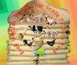Grain Pellets Complex Enzyme Feed Additive Fregulate Immunity Szym-nu