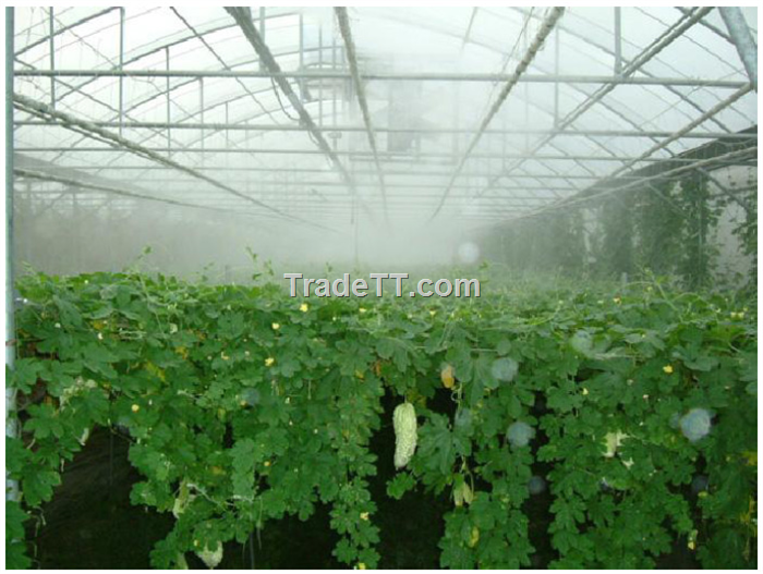 System trading corporation greenhouse