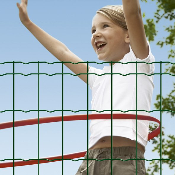 Beta fence .jpg